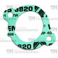 Прокладка впускного коллектора Polaris S410427010004