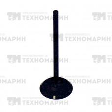 Впускной клапан BRP AU-09017I