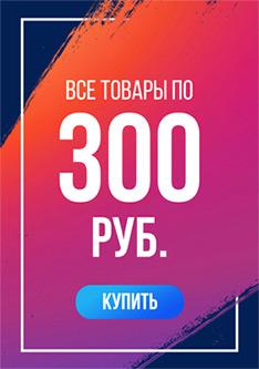 Все товары по 300 рублей